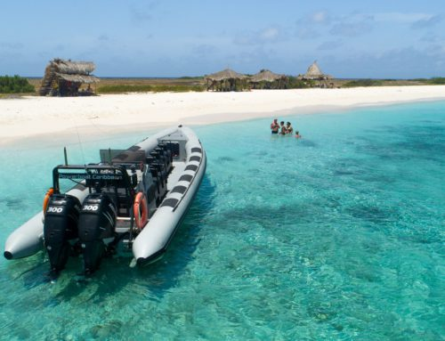 5x why the Powerboat is the best boat to take you to Klein Curacao
